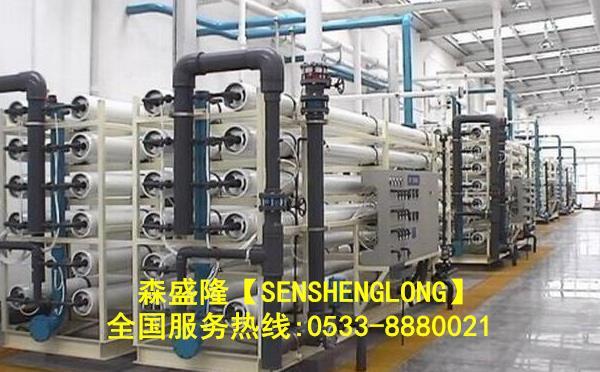 东莞RO膜阻垢剂应用实例